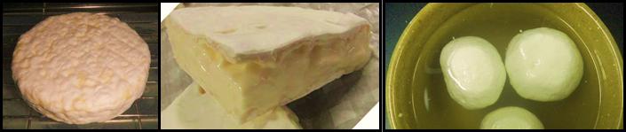 Camembert, Mozzarella